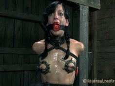 Damn, Elise Graves performs hardcore action in BDSM style