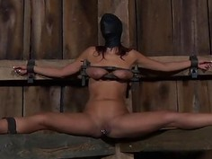 Restrained gal made to submit to stud lewd demands